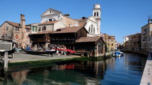 Global | No, los delfines no volvieron a Venecia, pero sí bajó la contaminación