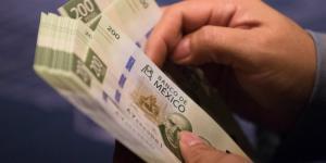 A Fondo | SHCP trabaja en la emisión de bonos verdes, pero ¿qué son y cómo benefician al país?