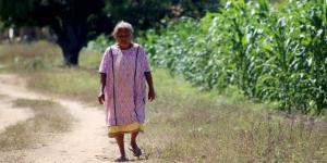 México | Van 15 meses y el programa Bienestar de AMLO aún no llega a las comunidades