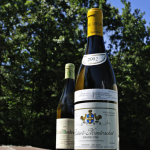 Wine for Summer | Batard Montrachet