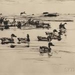 Frank Weston Benson (American, 1862-1951), Teal, 1925 (Estimate $250-$350)