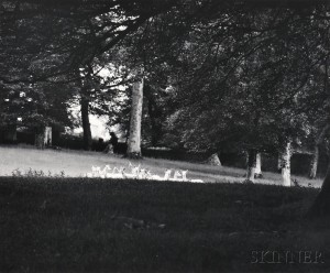 Paul Caponigro (American, b. 1932) Standing White Deer, Ireland, 1967 (Lot 113, Estimate $2,000-$3,000)