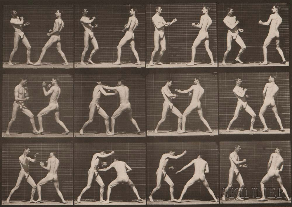Eadweard Muybridge (British, 1830-1904) Plate 338 (Men boxing) from Animal Locomotion, 1887 (Lot 143, Estimate: $800-1,200)