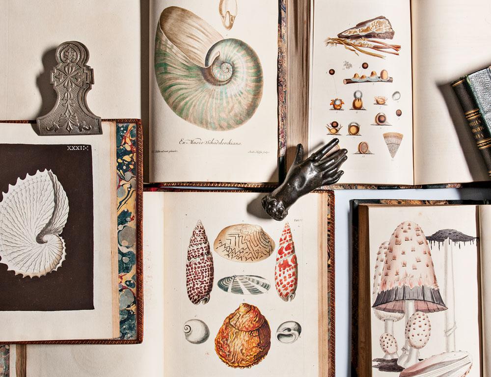 3012T | Books & Manuscripts online