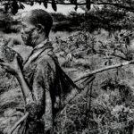 Sebastião Salgado (Brazilian, b. 1944)  Bushman, Botswana, 2008 (Lot 140, Estimate $4,000-6,000)