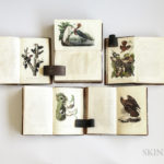 John James Audubon (1785-1851) The Birds of North America, first octavo edition (Lot 152 est. $30,000-35,000)