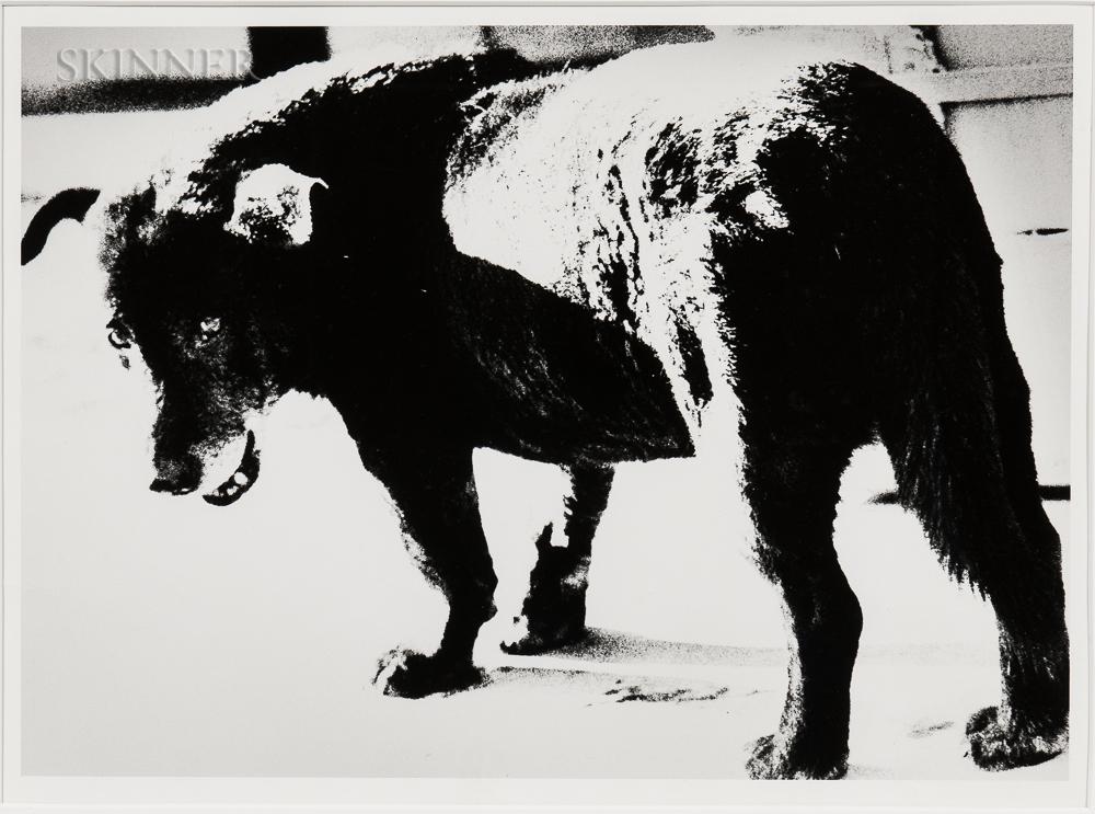 Daido Moriyama (Japanese, b. 1938) Stray Dog, Misawa, 1971, printed c. 2002 (Lot 144, Estimate: $3,000-5,000)