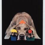 William Wegman (American, b. 1943) Basic Shapes in Color, 2001 (Lot 151, Estimate: $600-800)