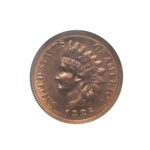1886 Type 2 Indian Head Cent, NGC MS66RD (Sold for: $28,290, 2018)