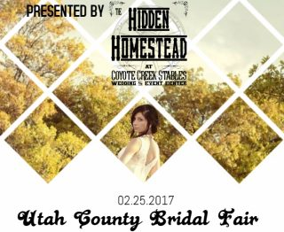 The Hidden Homestead Bridal Fair 2
