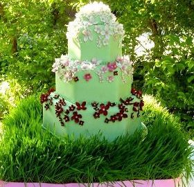 Utah Wedding Cakes My Sweet Cakes Salt Lake Bride