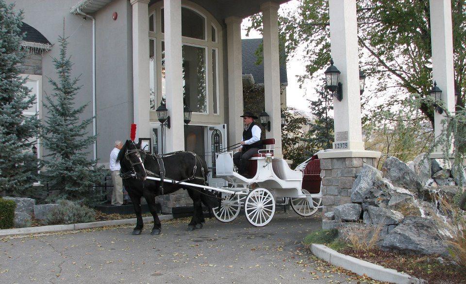 Utah Wedding Venue   Millennial Falls Wedding & Reception ...
