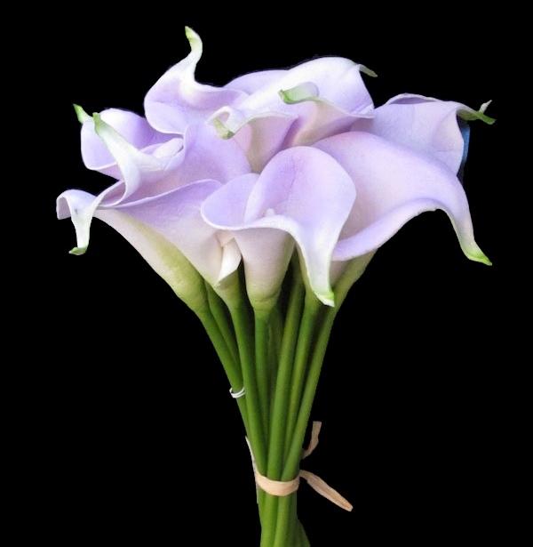 Calla Lilies lavender bridal bouquet