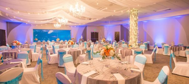 Moon-Light-wedding-lighting-Aquarium