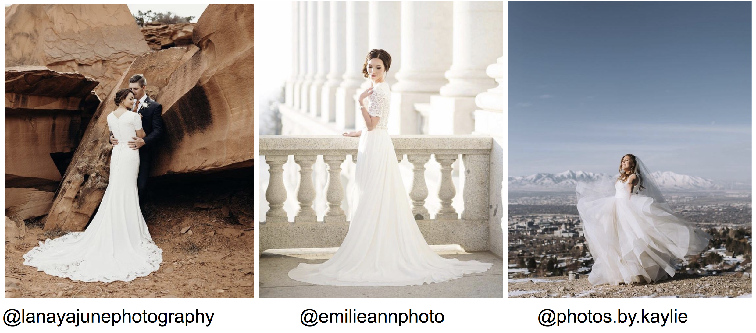 brides in beautiful gowns