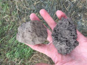 Soil Health Hand