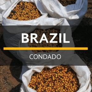 Brazil Condado from Eiland Coffee Roasters