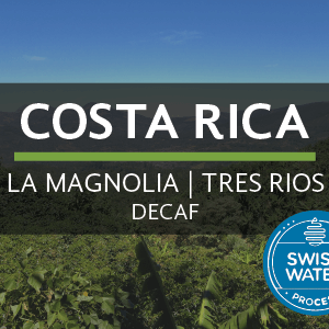 Costa Rica | La Magnolia (Decaf) from Eiland Coffee Roasters