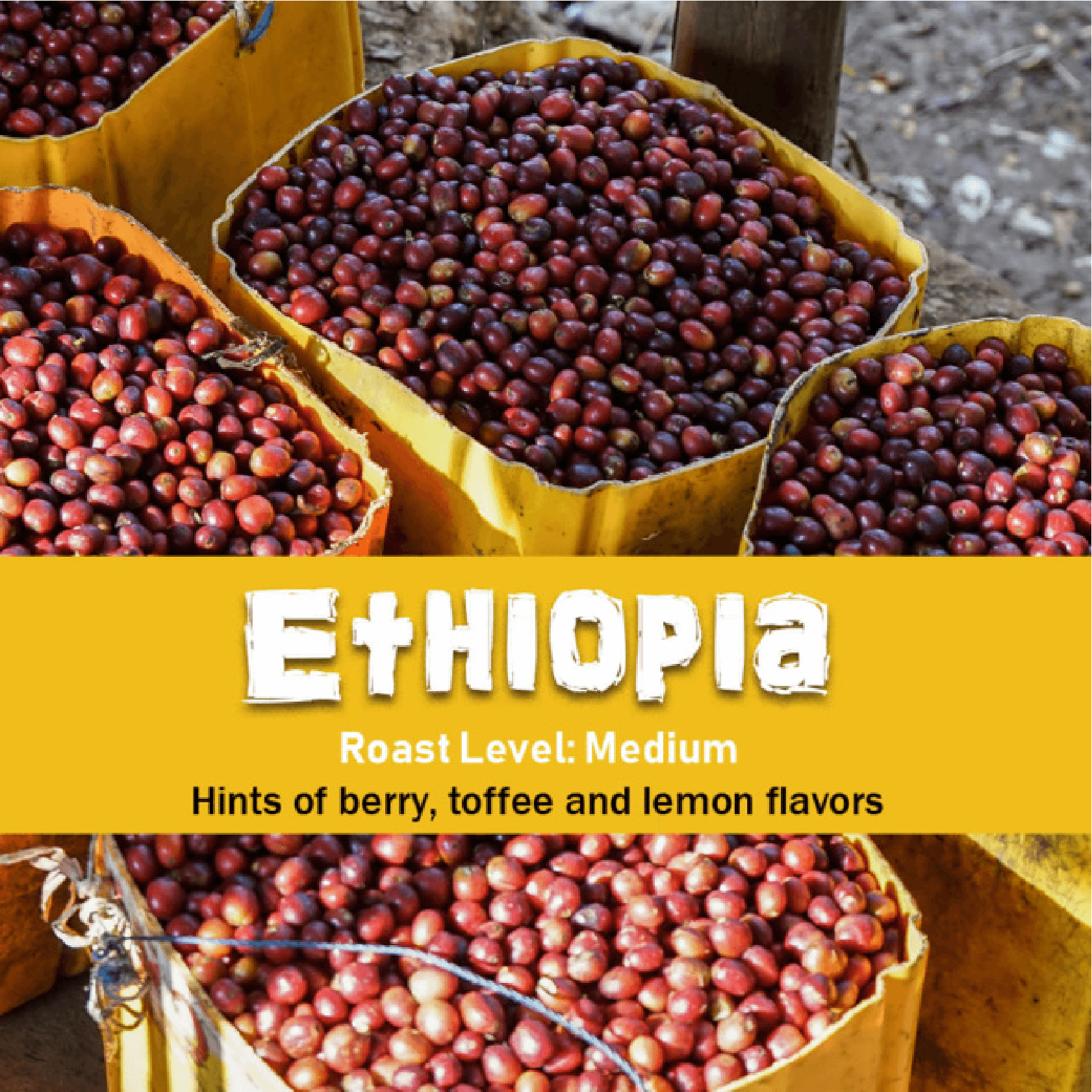 Ethiopian Yirgacheffe (Natural) from Malone Specialty Coffee