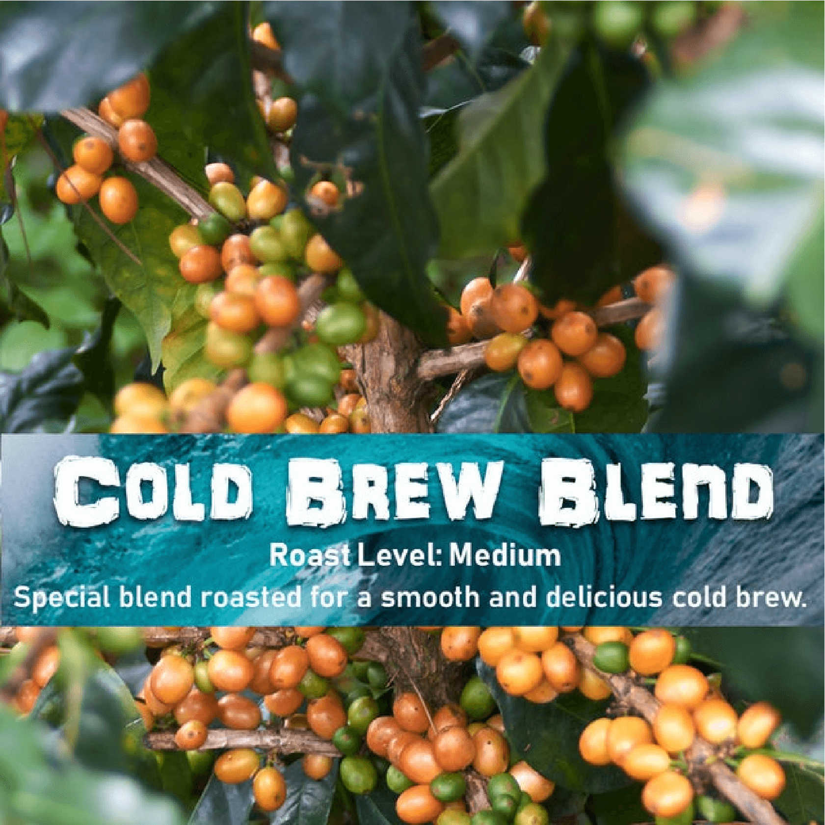 Cold Brew Blend from Malone Specialty Coffee