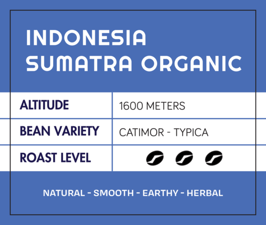 Indonesia Sumatra FTO from What's The Buzz