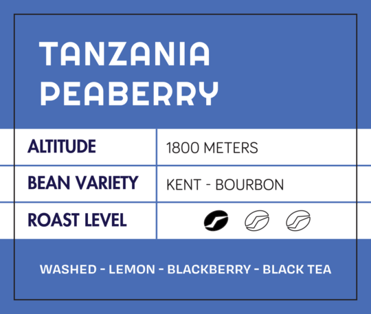 Tanzania Peaberry from What's The Buzz