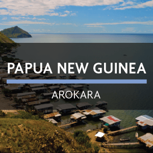 Papua New Guinea | Arokara from Eiland Coffee Roasters