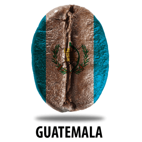 US Roast Guatemala Huehuetenango from US Roast
