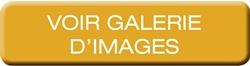 MAS-200 - Galerie d'images
