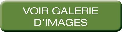 PNEUMATE-200 - Galerie d'images