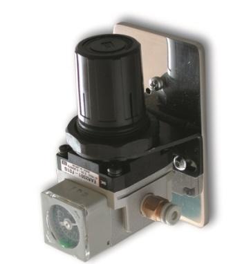 SAI2005 - Pressure regulator with pressure gauge
