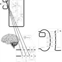Thumb?image type=greyscale