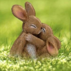 Bunnyhug