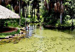 A Feira Internacional de Turismo do Pantanal acontece entre os dias 20 e 24 de abril em Cuiabá