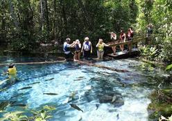 Bom Jardim: águas cristalinas e paisagem semelhante