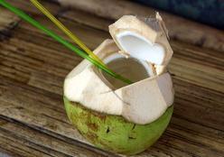 Água, óleo, leite, farinha... conheça os benefícios do coco para a saúde