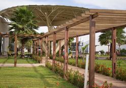10º Leilão pela Vida visa auxiliar orçamento do HCanMT e consolida parceria com a Estância Bahia Leilões
