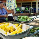 2º Festival da pamonha segue até quarta-feira na comunidade Rio dos Peixes