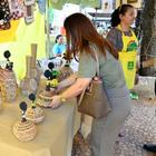 Feira de artesanato da Praça da República reforça renda e inciativa deve ser expandida