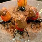 Pandemia faz chefe gastronômico inovar nos negócio