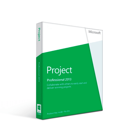 MS Project Professional 2013
