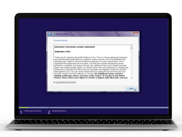 Dialog window with License Terms
