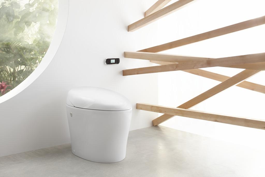 Bidet functionality within toilet