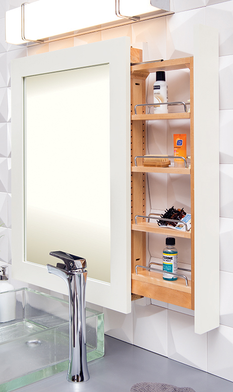 mirror with pull out storage for residential pros
