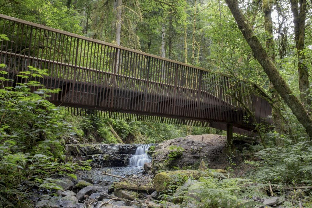 2019 AIA Small Project Awards: Forest Park Bridges by Fieldwork Design & Architecture