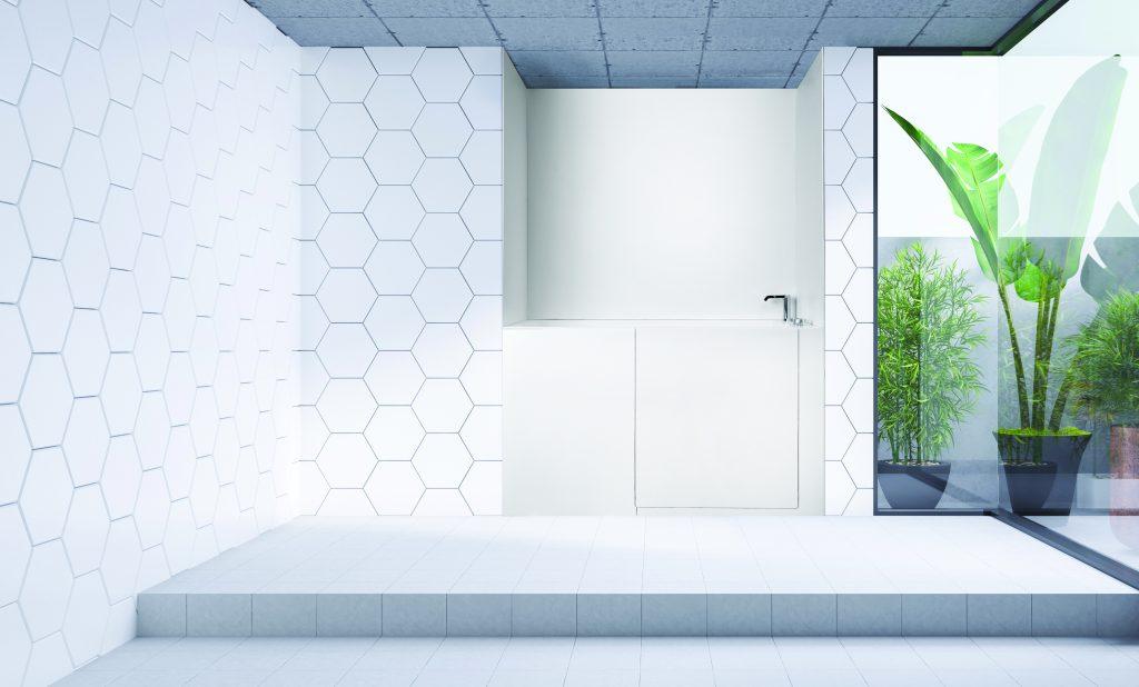Accessible Shower/Bath