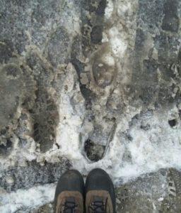 Si ce n'est pas votre premier hiver à Montréal, vous voyez de quoi je parle...
