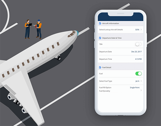 Airplane Inspection System FBO
