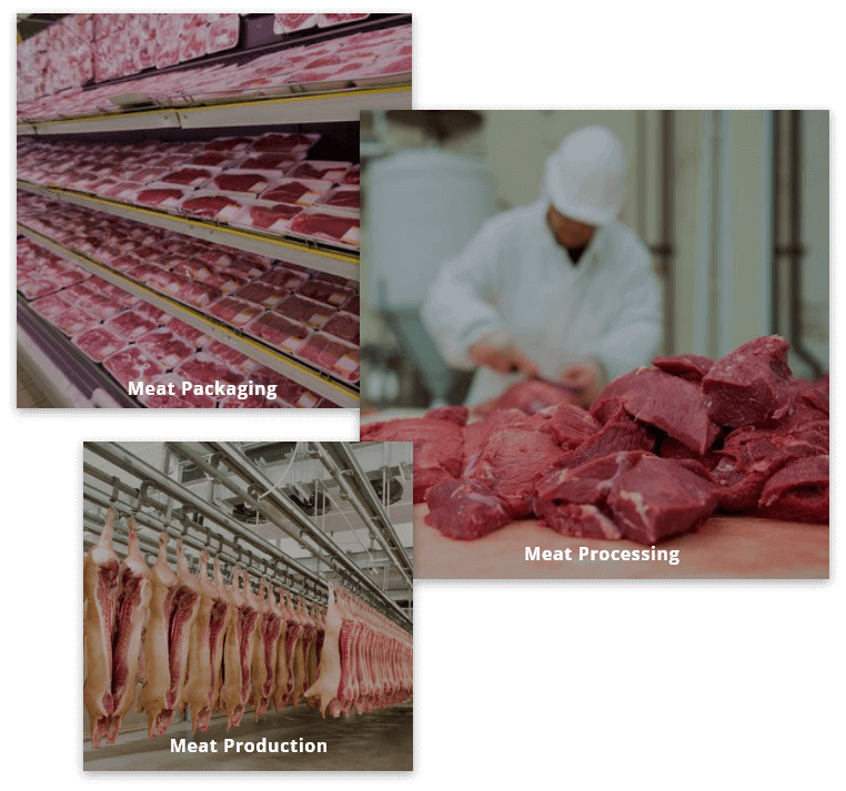 Meat Processing and Packaging Solution Development