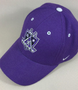 Los Angeles Kings Nike Purple Cap